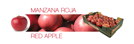 Catálogo Cosanse: Manzana roja / Red apple