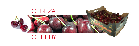 Commercial catalog: Cherry