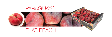 Commercial catalog: Flat Peach